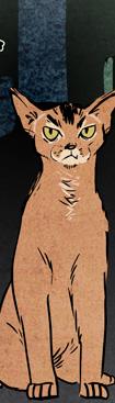 12. Le Chat